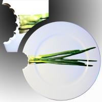 Декоративная откусанная тарелка «Лук».