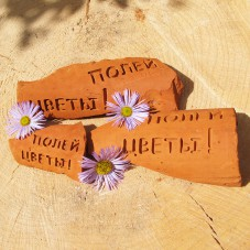 Украшение для цветов — «Полей цветы»!